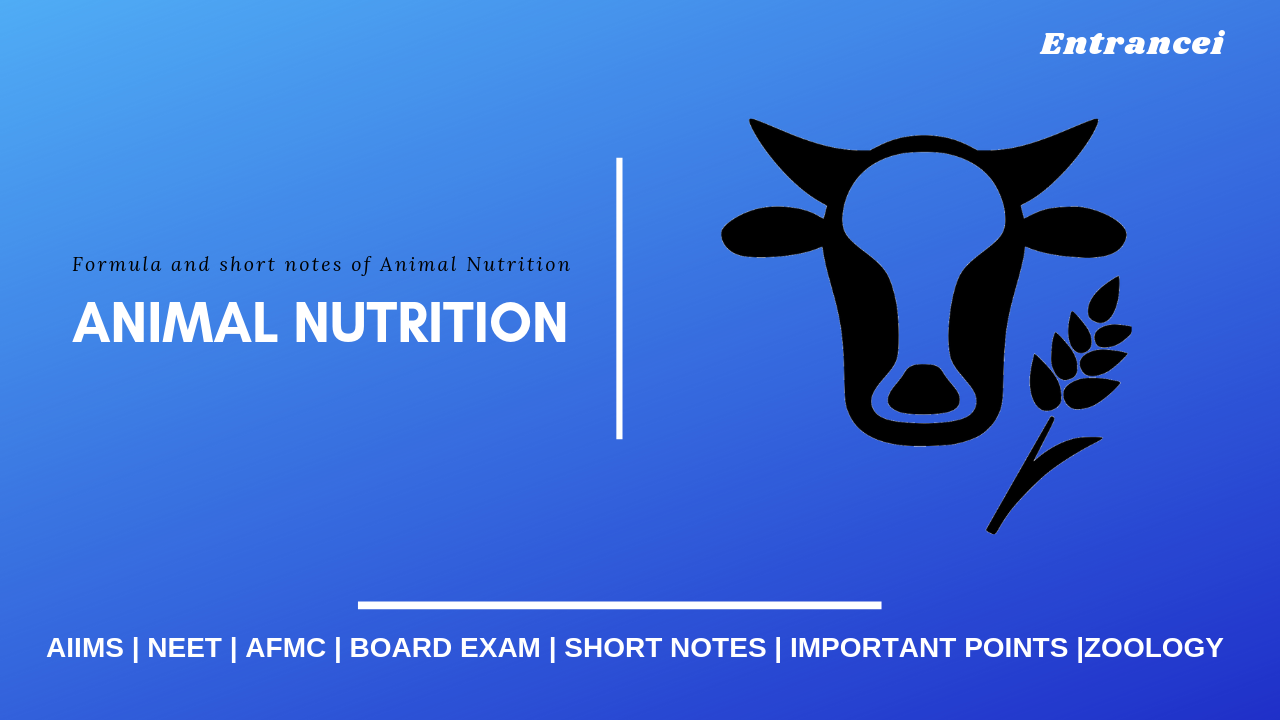 Animal Nutrition zoology for NEET | short Notes and pointer for important points of Animal Nutrition| Question theory an
