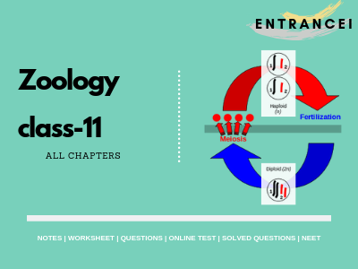 Class 11 biology notes | Zoology