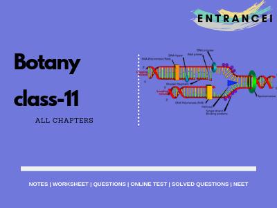 NCERT Biology class 11 notes   For NEET Biology Entrancei