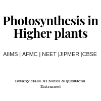 Notes & Questions for Photosynthesis In Higher Plants class